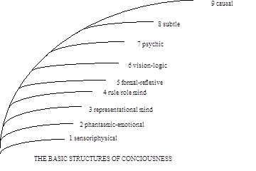 The Basic Structures of Consciousness